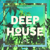 Just Deep House