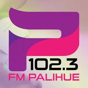 Station FM Palihue