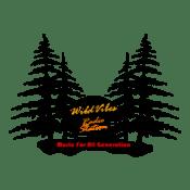 Emisora WildVibes
